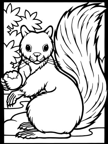 squirrel monkey coloring pages squirrel acorn coloring page supercoloring com