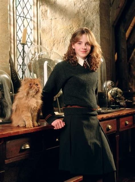 Hermione Granger Harry Potter 3 by Hermione Granger Year 3 Powerful Of Literature