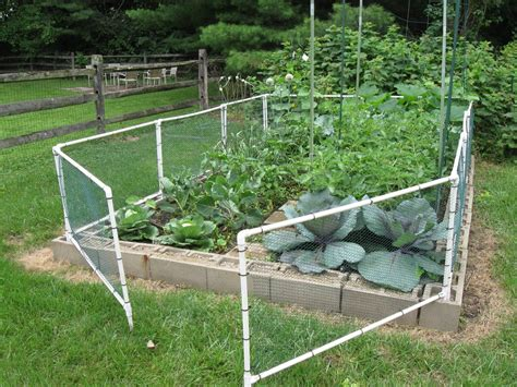 build  garden fenced vegetable garden cheap