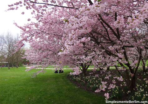 Britzer Garten Gärten Der Welt by Os Melhores Lugares Para Apreciar A Primavera Em Berlim