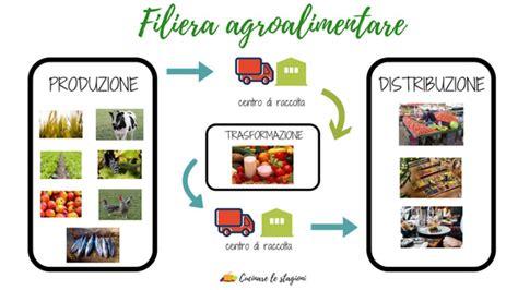 la filiera alimentare cos 232 la filiera agroalimentare e perch 232 232 importante