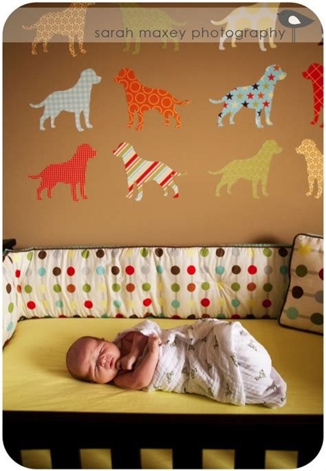 puppy nursery 35 best images about baby nursery on budget nursery baby mobiles and