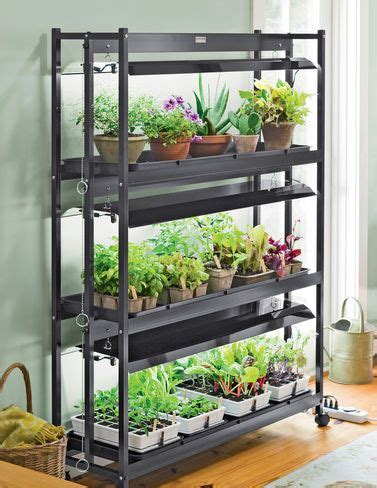 indoor garden design pictures best 25 indoor vegetable gardening ideas on