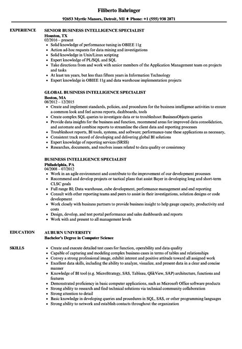 sle resume practitioner business resume bilingual resume jda 100 images itil