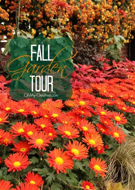 Fall Flower Garden Tour Fall Flower Garden