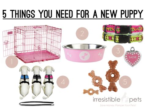 things you need for a new house what do i need to buy for a new house five things you