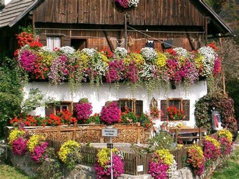 vasche per piante da terrazzo ceciefave un balcone perfetto