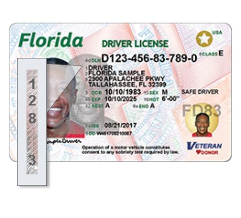 florida department of motor vehicles license check florida dmv license check amazing further checking on