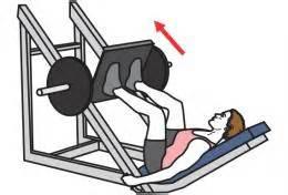 Presse De Musculation