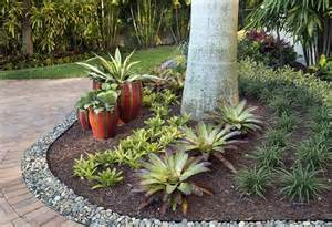container gardens for florida 149 best images about south florida landscaping on