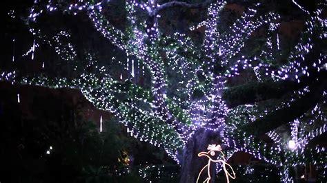city park lights new orleans new orleans celebration in the oaks youtube