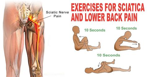 lower back pain in bed 458 best images about physical therapy exercises on pinterest