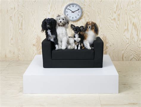 ikea dogs ikea just launched a pet collection and it s too much