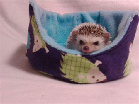 hedgehog bed 1000 ideas about hedgehog cage on pinterest hedgehog