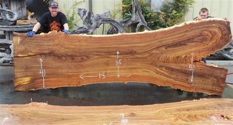large live edge elm slab live edge elm burl slabs woodworking redwood