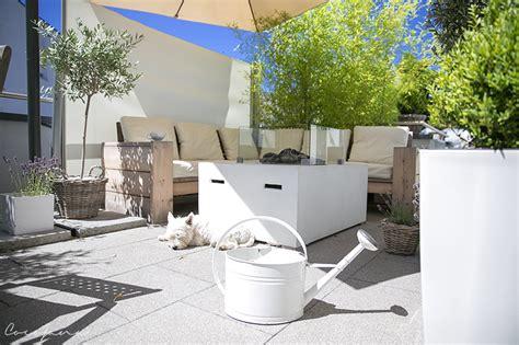 yucca palme für draußen garten idee terrasse