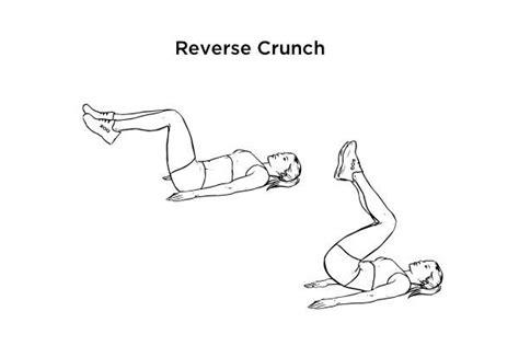 cut    abdominal muscles fitneass