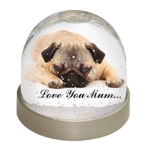 pug snow globe pug you snow dome globe waterball gift ebay