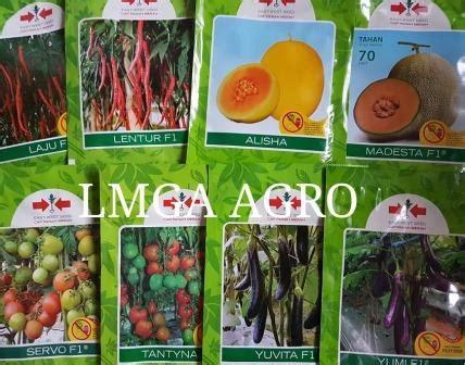 Bibit Kacang Panjang Cap Panah Merah lmga agro grosir belanja produk pertanian benih