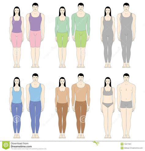 tipi di sedere femminile corpi maschii e femminili immagine stock immagine 19377001