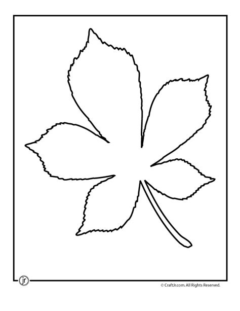 leaf pattern recognition leaf outline printable az coloring pages