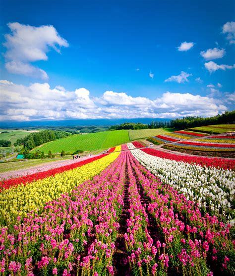 hokkaido official tourism guide  japan travel