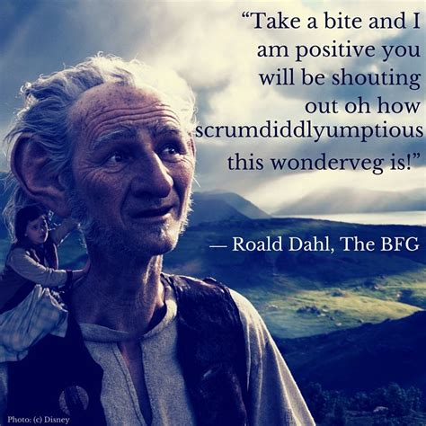 quotes  bfg  roald dahl   film  disney funny stuff bfg quotes bfg