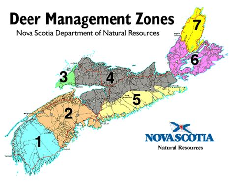 california deer kill map white tailed deer in scotia resources