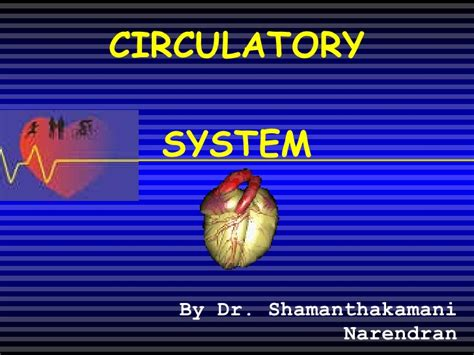 Circulatory System Ppt Circulatory System Powerpoint
