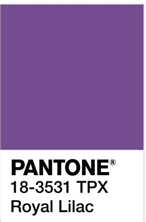 color trends pantones winter  spring selections