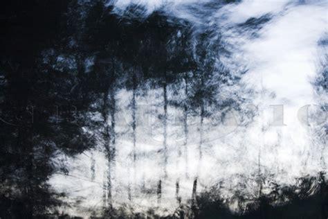 imagenes en movimiento de la naturaleza imagenes de la naturaleza en movimiento imagui