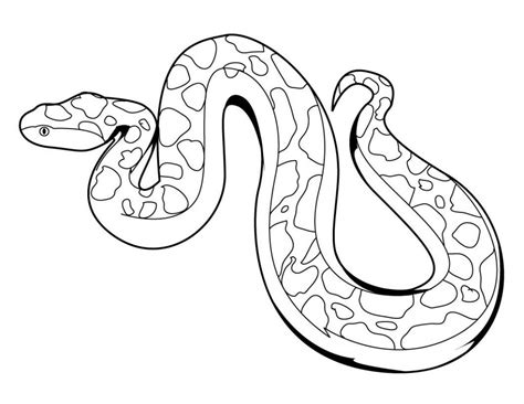 snake colors free printable snake coloring pages for