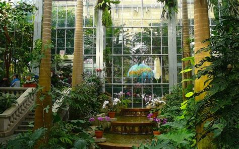 Washington Dc With Kids The 2017 Guide Dc Botanical Gardens Hours