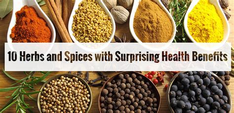 spices and their benefits books herbs and spices 10 amazing health benefits of indian spices