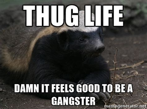 Badger Meme - thug life damn it feels good to be a gangster honey