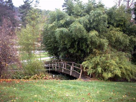 Botanisches Garten by Botanischer Garten Der Universit 228 T T 252 Bingen
