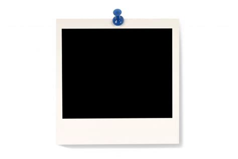 immagini gratuita polaroid foto no fundo branco baixar fotos gratuitas