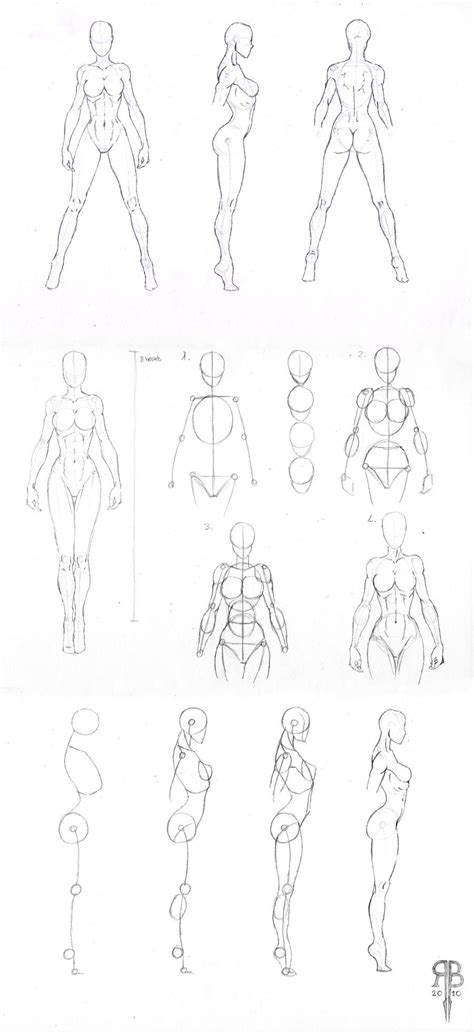 Drawing References by Shapes Reference By Rofelrolf On Deviantart