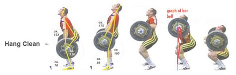 power clean diagram the relationship between strength and sprint times