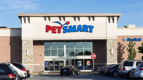 petsmart puppy school petsmart recalls canned food due to possible contamination