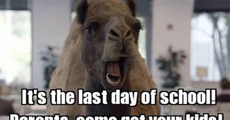 Last Day Of School Meme - last day of school meme google search teacher comics