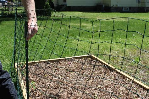 Ways To Keep Animals Out Of Your Garden Build A Simple How To Build A Vegetable Garden Fence