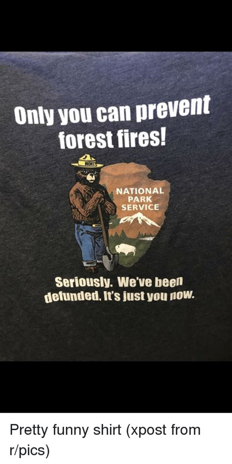 Only You Can Prevent Forest Fires Meme - only you can prevent forest fires wnok national park