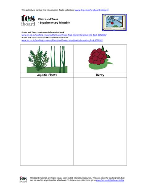 Caption Template Space Label And Caption Template By Uk Teaching