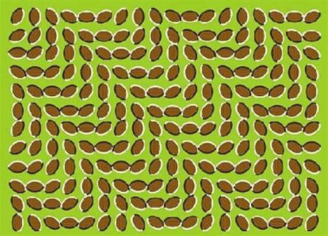 ilusiones opticas uno para todo de todo un poco ilusiones 211 pticas