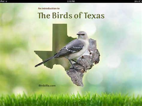 backyard birds of texas texas birds app