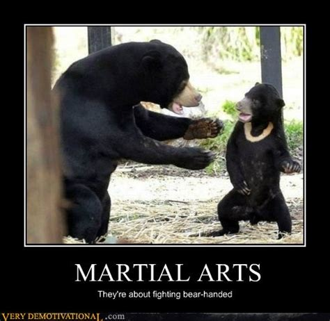 Martial Arts Memes - martial arts funny pictures bear martial arts