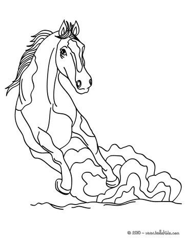 sketches of wild horses coloring pages