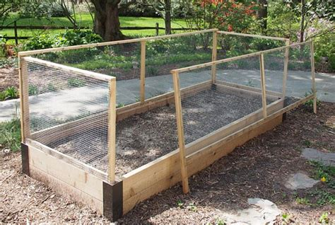 Raised Garden Beds Against Fence Raised Vegetable Garden