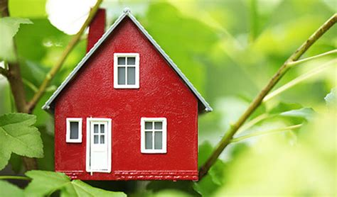 how to make your house green 5 surprising ideas to make your home more eco friendly